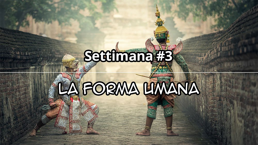 Settimana #3